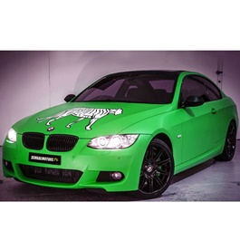PML N Vinyl Wrap Per Sq Ft	-SehgalMotors.Pk