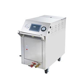Steam Cleaning Machine C600 (Two Gun Steam) - Commercial-SehgalMotors.Pk